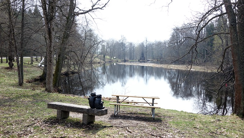 Damm vid skulpturparken i Engelsberg