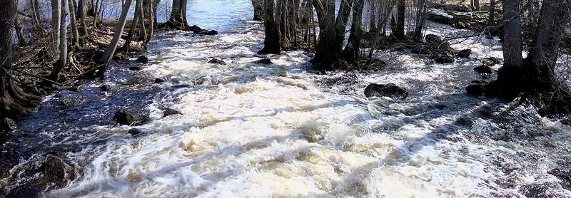Vårflod nedanför dammen i Uttersberg