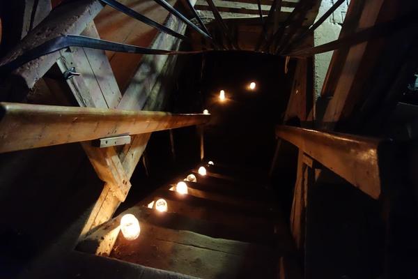 """Installationen """"Inre skog"""" i Kvarnbo kvarn. Vägen ner i källarens mörker."""