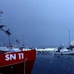 Gräsgårds hamn, Öland. Snöyra. Vinter